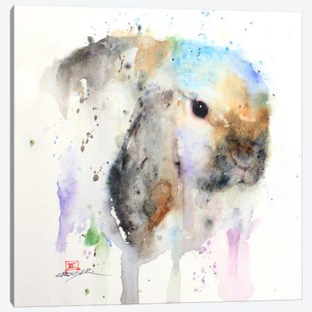Rabbit Canvas Print #DCR26} by Dean Crouser Canvas Artwork