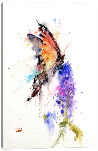 Butterfly II Canvas Print #DCR28