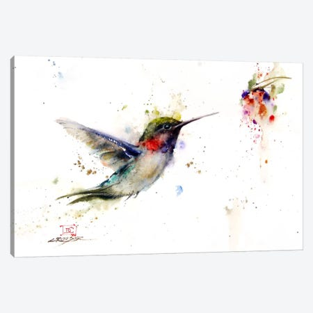 Colibri in the Moment Canvas Print #DCR31} by Dean Crouser Canvas Artwork