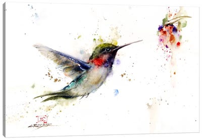 Colibri in the Moment Canvas Art Print