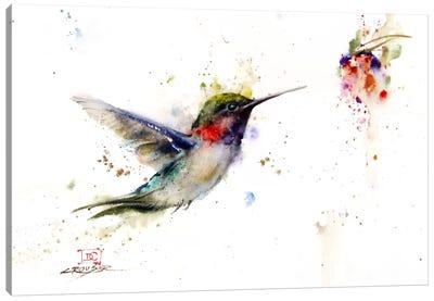 Colibri in the Moment Canvas Print #DCR31