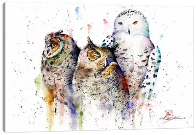 Owls Don't Sleep Canvas Art Print