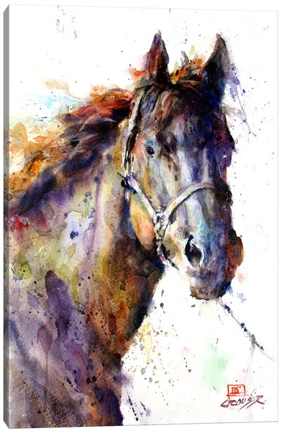 Horse III Canvas Art Print