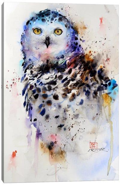 Owl Canvas Print #DCR50