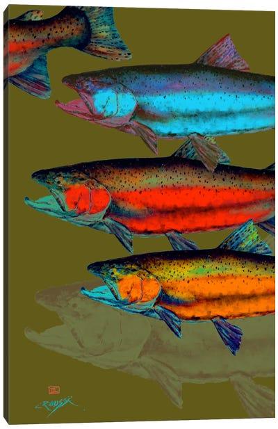 Multi-Colored Fish Canvas Print #DCR51