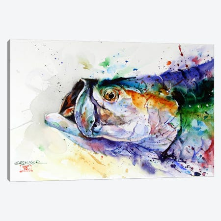 Fish Canvas Print #DCR55} by Dean Crouser Canvas Art Print