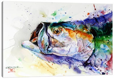 Fish Canvas Print #DCR55