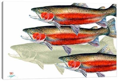 Bloody Fish Canvas Print #DCR58