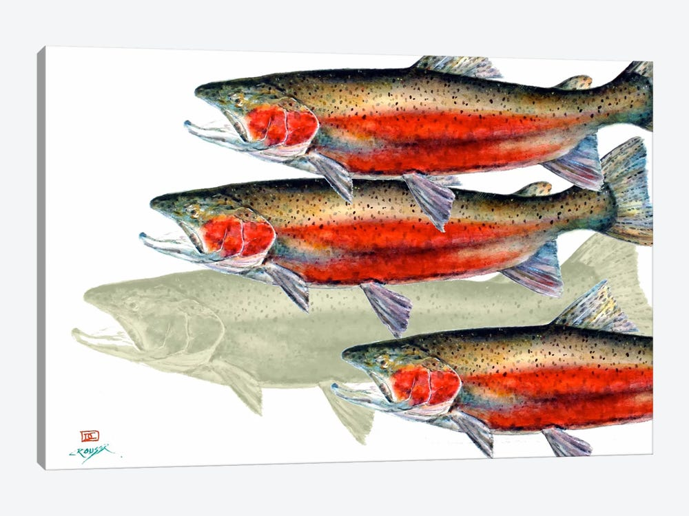 Bloody Fish by Dean Crouser 1-piece Canvas Art