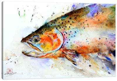 Fish (Multi-Color) Canvas Art Print
