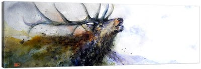 Elk II Canvas Art Print