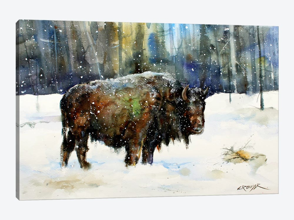 Bison by Dean Crouser 1-piece Canvas Art