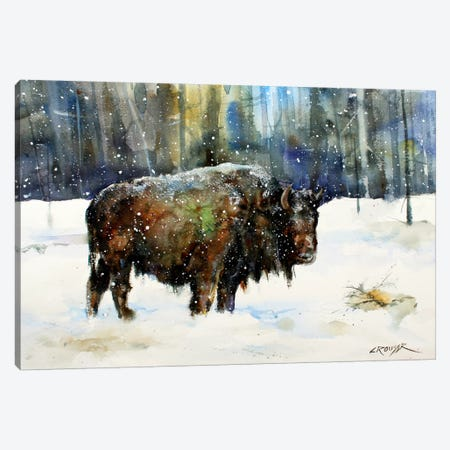 Bison Canvas Print #DCR67} by Dean Crouser Canvas Artwork