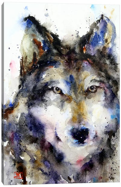Wolf II Canvas Art Print