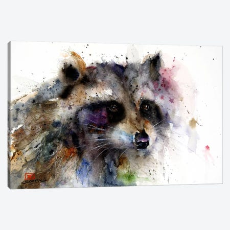 Raccoon Canvas Print #DCR71} by Dean Crouser Canvas Wall Art
