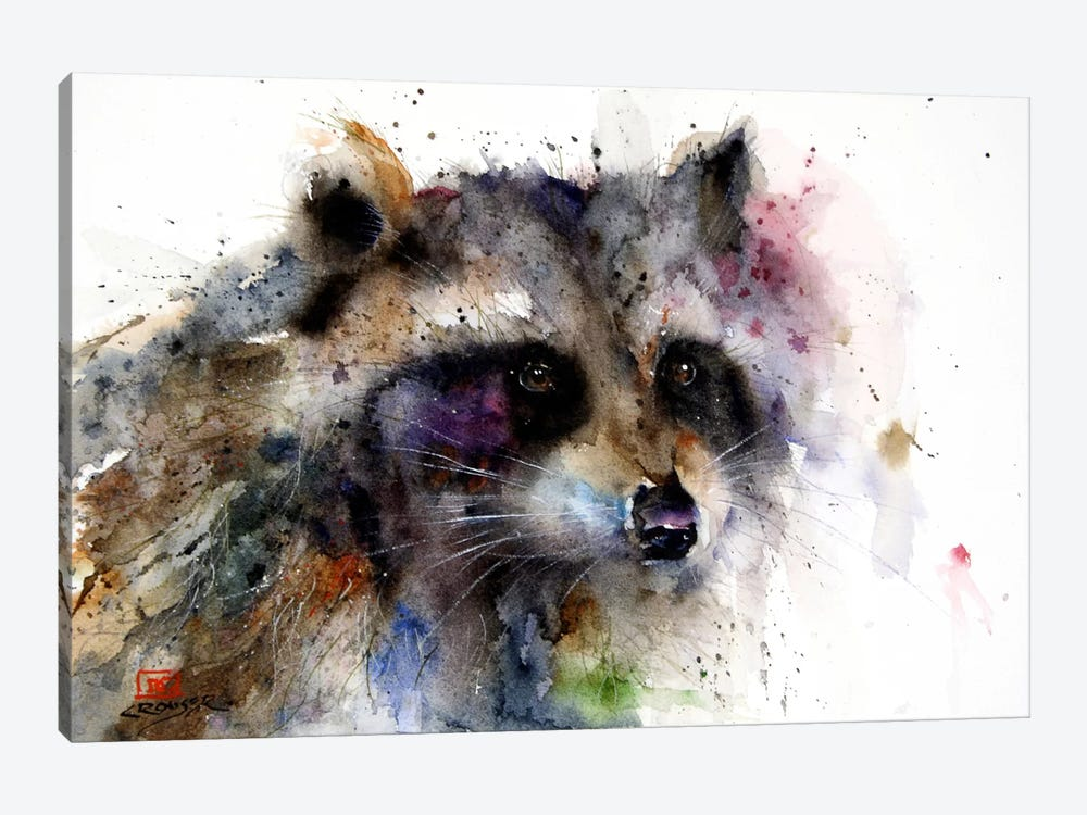 Raccoon by Dean Crouser 1-piece Canvas Art Print