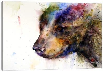 Bear Canvas Print #DCR73