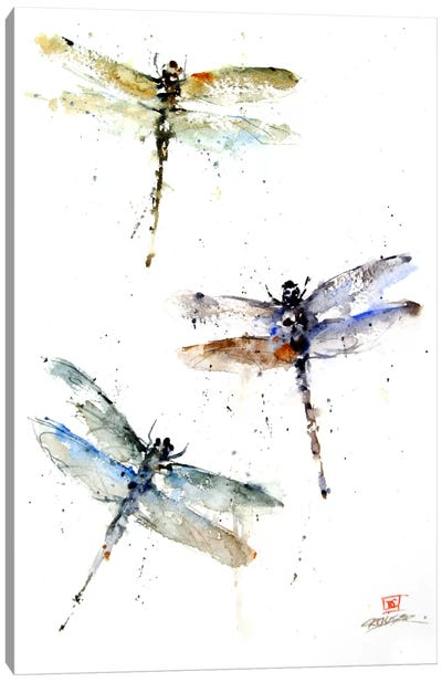 Dragonflies Canvas Art Print