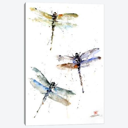 Dragonflies Canvas Print #DCR8} by Dean Crouser Canvas Art