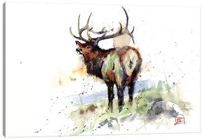 Elk III Canvas Art Print