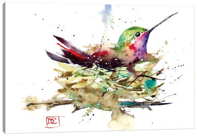 Hummer In Nest Canvas Art Print