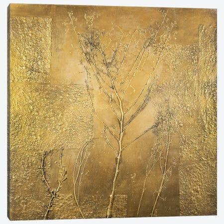 Golden Tree Canvas Print #DCT19} by Daniela Carletti Canvas Art