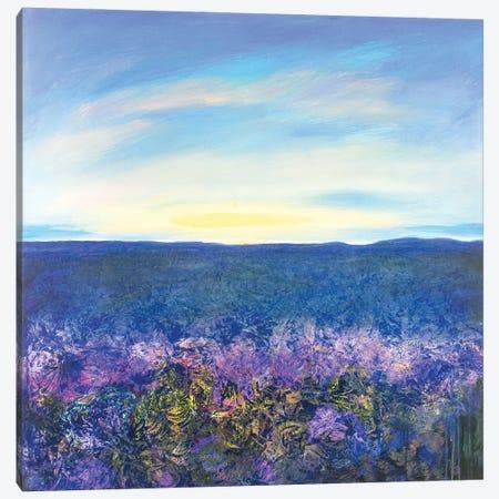 Sunrise I Canvas Print #DCT38} by Daniela Carletti Canvas Artwork
