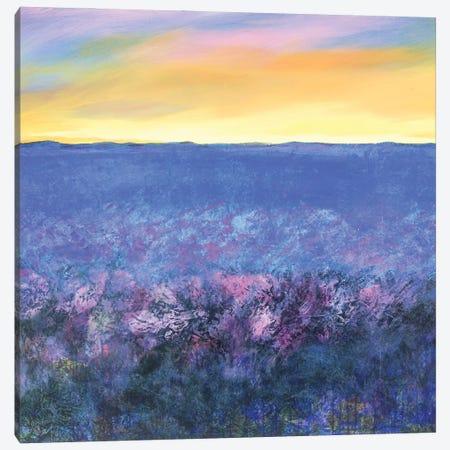 Sunset Canvas Print #DCT39} by Daniela Carletti Canvas Art