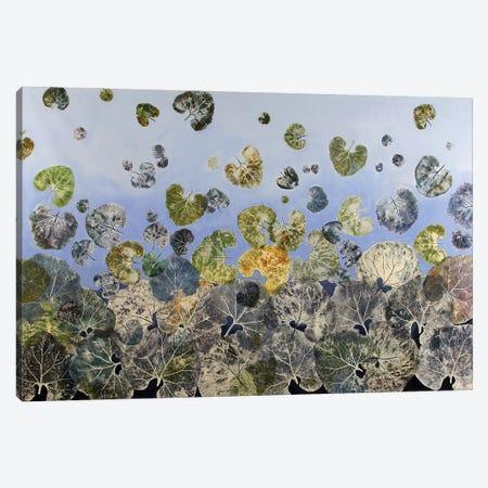Dancing Leaves Canvas Print #DCT46} by Daniela Carletti Canvas Artwork