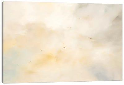 Second Chances Canvas Art Print