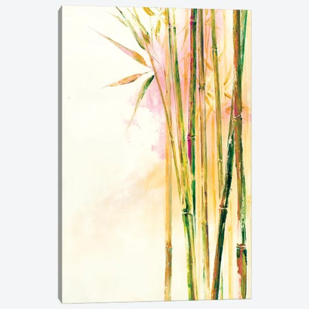 Bamboo III Canvas Print #DDA23} by Dina D'Argo Art Print