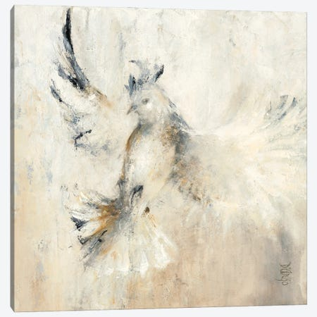 Cockatoo Canvas Print #DDA24} by Dina D'Argo Canvas Artwork