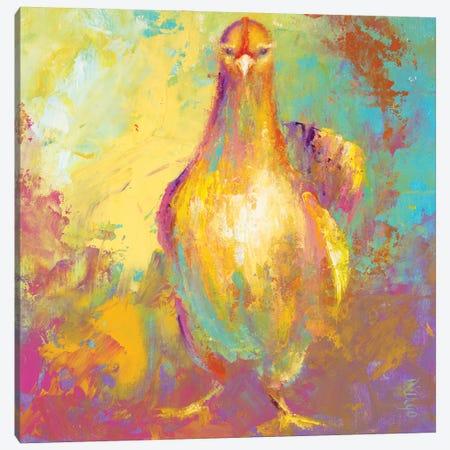 Funky Chicken II Canvas Print #DDA26} by Dina D'Argo Canvas Art