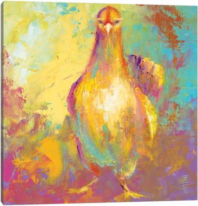 Funky Chicken II Canvas Art Print