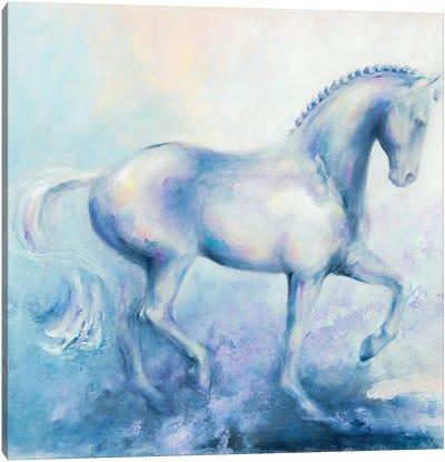 Spanish Grey Canvas Art Print