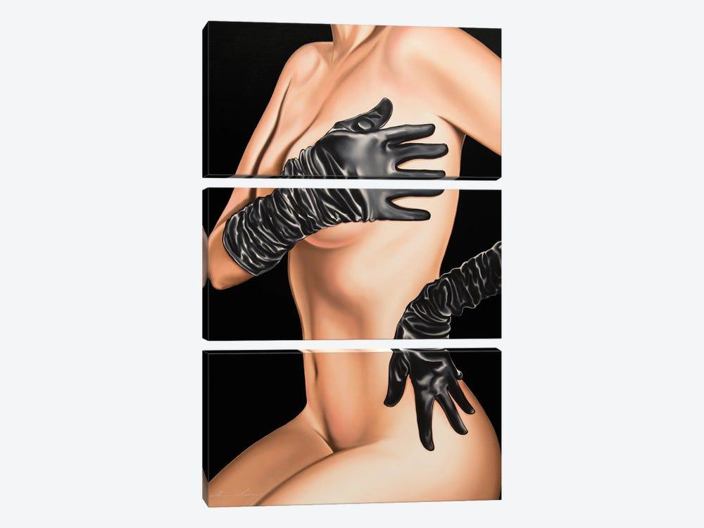 Seductress by Drew Darcy 3-piece Canvas Art Print