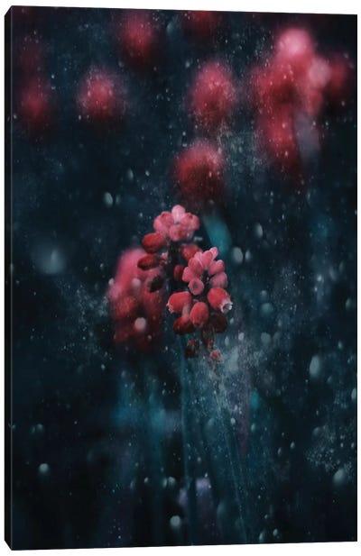 A Snowy Evening Canvas Art Print