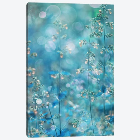 Pure Feeling Of Dreams Canvas Print #DDE2} by Delphine Devos Art Print