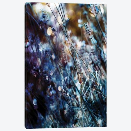 Flowers, Bubbles & Dreams Canvas Print #DDE6} by Delphine Devos Canvas Art