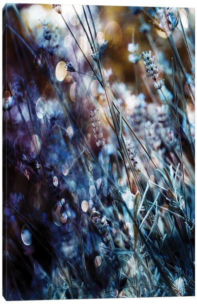 Flowers, Bubbles & Dreams Canvas Art Print
