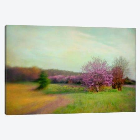 Nature Is Divine Canvas Print #DDH3} by Dawn D. Hanna Canvas Artwork