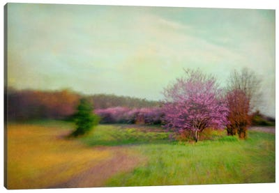 Nature Is Divine Canvas Art Print