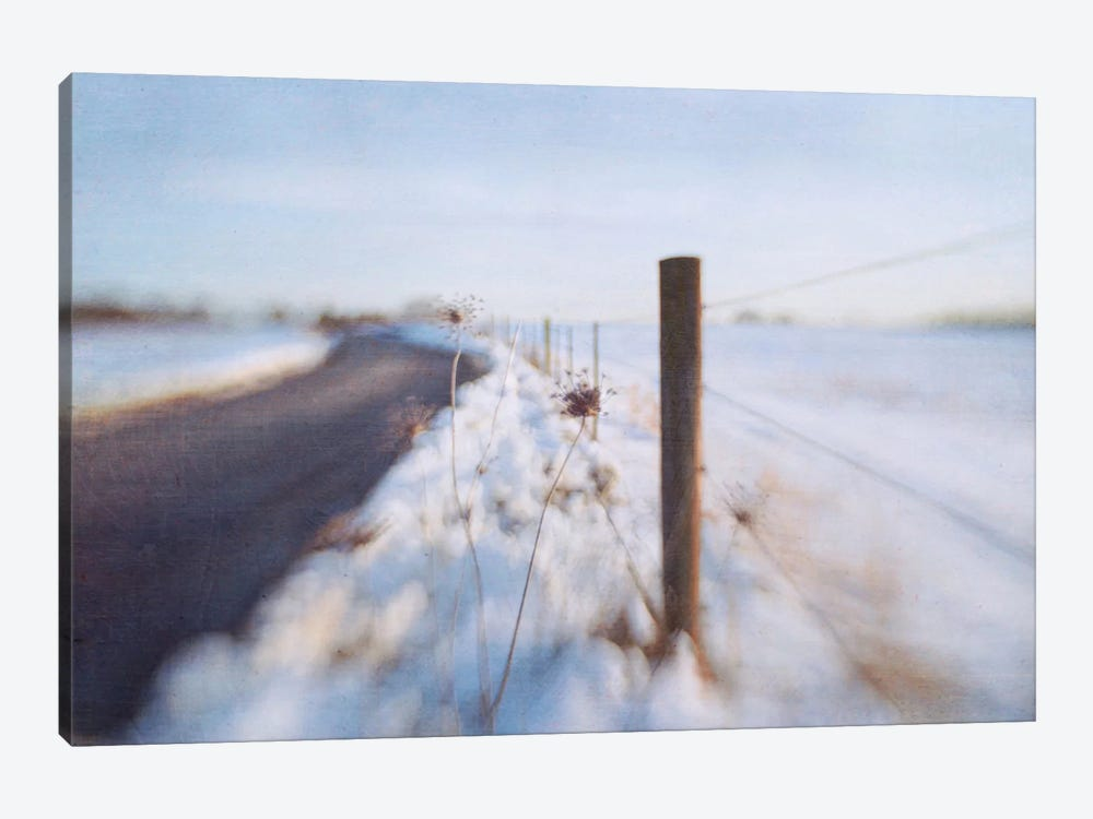 Walking On The Edge Of Winter by Dawn D. Hanna 1-piece Canvas Art Print