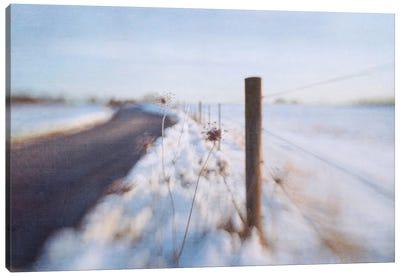 Walking On The Edge Of Winter Canvas Art Print
