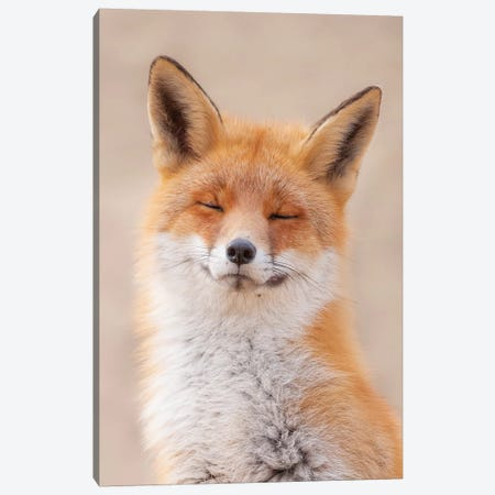 Zen Fox Canvas Print #DDJ31} by Dick van Duijn Canvas Print