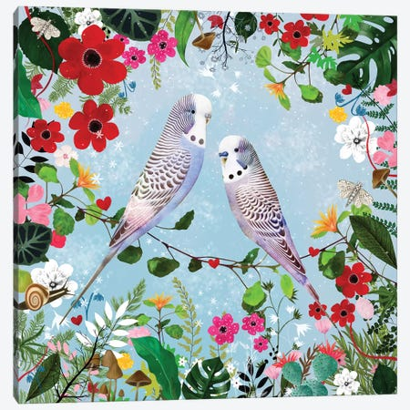 Budgerigars Canvas Print #DDL13} by Danse De Lune Canvas Art Print