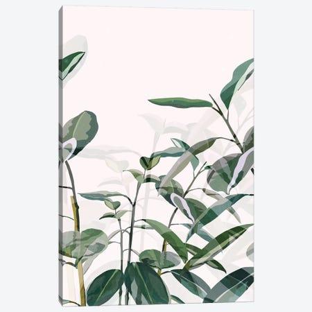 Greenhouse 3-Piece Canvas #DDL30} by Danse De Lune Canvas Art Print