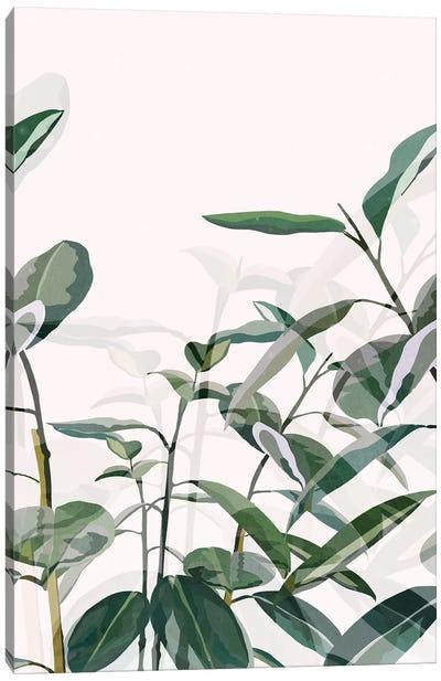 Greenhouse Canvas Art Print