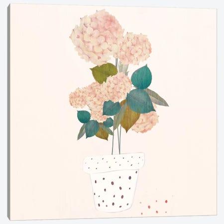 Imagined Plants Canvas Print #DDL34} by Danse De Lune Canvas Artwork