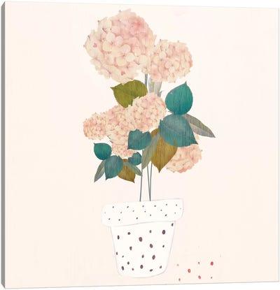 Imagined Plants Canvas Art Print